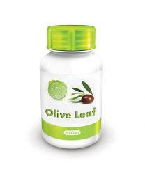 Holistix Olive Leaf 60 cap